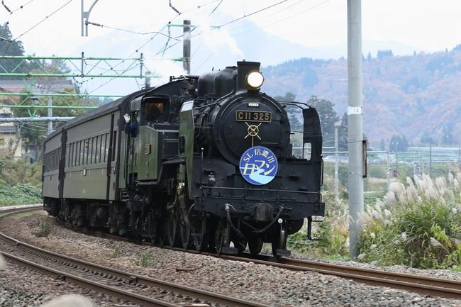 BT8Q4111.JPG